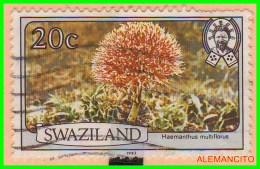 SWAZILAND  -  AFRICA   SELLO AÑO 1983 - Swaziland (1968-...)