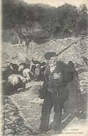 CORSE BERGER GARDANT SES BREBIS CORSICA - Corse