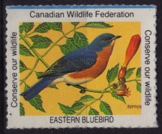 EASTERN BLUEBIRD / BIRD - Canadian Wildlife Federation - CANADA - LABEL / CINDERELLA / VIGNETTE