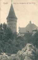 Pologne     OPPELN -   Partie Im Schlobgarten Mit Dem Schob - Polen