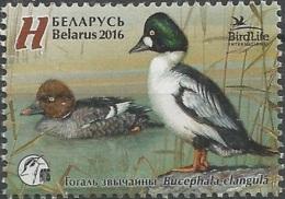 BY 2016  DUCKS, BELORUSSIA, 1 X 1v, MNH - Belarus