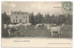 AUVERGNE : CHATEAU DE LANDAN - Andere Gemeenten