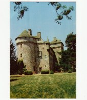 15 - Château De LA VIGNE - N°0980 - Façade Sud-ALLY - France