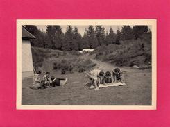 ECLAIREUSES DE FRANCE, VEILLE D'EXCURSION, Lecture De Carte, Animée, A. Plantier, Eclaireuses) - Scoutisme