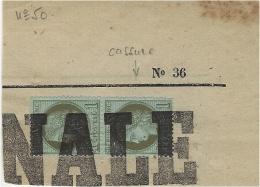 1874- Paire N° 50 Sur  Grand Fragment Oblit. Typographique - 1863-1870 Napoléon III Lauré