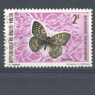 ALTO VOLTA   1971 Butterflies USED - Alto Volta (1958-1984)