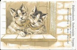 Chats ......Etablissements Economiques Troyens 100 Maisons De Vente Alimentation à Bon Marché - Katten