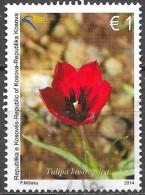 Kosovo - Flore - Y&T N° 164  - Oblitéré - Kosovo