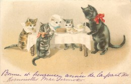 CHAT - CHATONS - ATTITUDE HUMANISEE - CHATS PRENANT UN GOUTER - 1903 - CPA - Chats