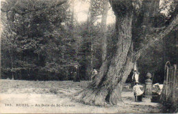 RUEIL - Au Bois De Saint Cucufa    (92378) - Rueil Malmaison