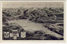 TOPOGRAPHIE - Rund Um Den Bodensee, Schweiz, Deutschland U. Österreich - Postcards