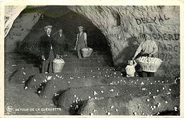 Folx-les-Caves. Retour De La Cueillette - Orp-Jauche