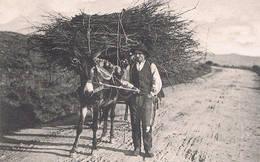 MENAGGIO - LEGNAIUOLO 1910 - Como