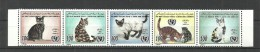 1996- Libya - African Child Day - UNICEF - Domestic Cats - Strip Of 5 Stamps MNH** - Domestic Cats