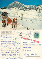 Ski Lift, Courmayeur, Val D'Aosta , Italy Postcard Posted 1980 Stamp + Postage Due Markings - Aosta