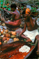 Native Boys Breaking Cocoa Pods, New Guinea, Papua New Guinea Postcard Unposted - Papua New Guinea