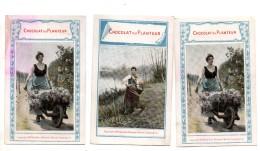Chocolat Du Planteur. Jeune Femme.brouette Fleurs. Calendrier 1899. - Chocolate