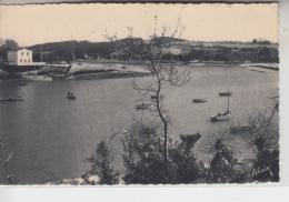 29 - MOËLAN SUR MER - Port De Belon - Moëlan-sur-Mer