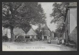 BUGEAT - Avenue De Pérols - Non Classés