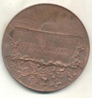 HOMENAJE DE LA CAPITAL DE LA REPUBLICA A LA JUNTA GUBERNATIVA DE 1810 MARIANO MORENO CENTENARIO AÑO 1910 MEDALLON - Firma's