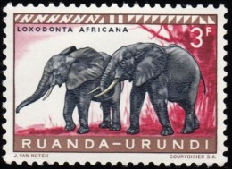 RUANDA-URUNDI - Scott #144 Loxodonta Africana / Mint NH Stamp - 1948-61: Mint/hinged