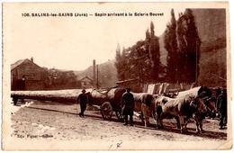 SALINS-les-BAINS (39) SAPIN ARRIVANT à La SCIERIE BOUVET. - France