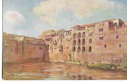 "The  Holy  Land  ,  Jerusalem   ,  ""  Pool  Of  Hezekiah  ""    Oilette - Illustrators & Photographers"