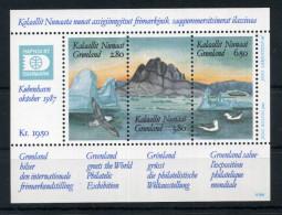1987 GROENLANDIA BF1 MNH - Groenlandia