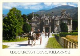 Muckross House, Killarney, Kerry, Ireland Postcard Unposted - Kerry