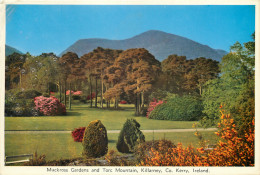 Muckross Gardens, Killarney, Kerry, Ireland Postcard - Kerry