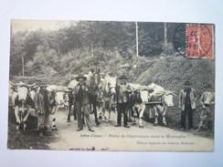 BALLON  D'ALSACE  :  HALTE De CHARRETIERS Dans La  MONTAGNE  -  SUP Animation Avec  ATTELAGES    1907 - Zonder Classificatie