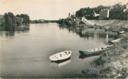 Petite Cpsm -  Montjean - Bords De La Loire           W558 - France