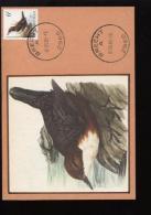 Belgie Buzin Vogels Birds 2459 6fr Maximumkaart RR Brecht 1/6/1992 RR - 1985-.. Oiseaux (Buzin)