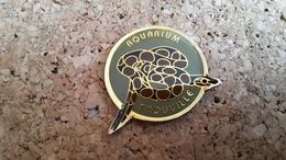 1 Pins Sur La Ville De  Trouville Aquaruim Serpent - Pin's & Anstecknadeln