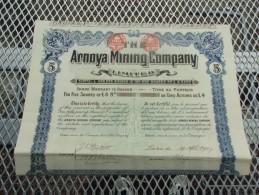 THE ARNOYA MINING COMPANY (titre De 5 Actions) 1907 - Actions & Titres