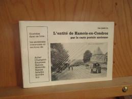 L´entité De Hamois En Condroz Par La Carte Postale Ancienne. (150 CP) Luc Jadot Jr. 1984. - Culture