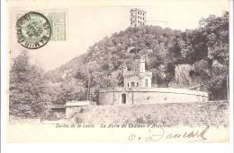 Houyet-Dinant-1906-Château Royal D'Ardenne-La Halte-Gare-Royale Utilisée Par Léopold II-Pont Chemin De Fer-Lesse-Texte - Houyet