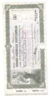 Buono Postale Fruttifero  2500000 Lire Annullato Ramiola ( Parma ) Lotto.966 - Azioni & Titoli