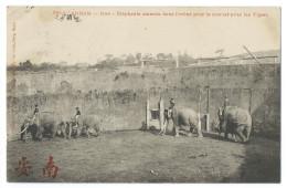 ANNAM, VIÊT-NAM - HUÉ - Éléphants Amenés Dans L'arène Pour Le Combat Avec Les Tigres - Ed. P. Dieulefils, Hanoï - Animée - Viêt-Nam