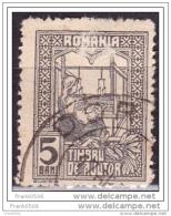 Romania  1916-18, The Queen Weaving, 5b, Used - Usati