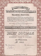 Etablissements Vanderborght Frères - Actions & Titres