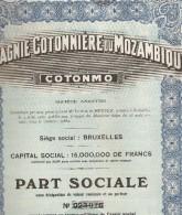 """Compagnie Cottonnière De Mozambique """" COTONMO"""" - Actions & Titres"""
