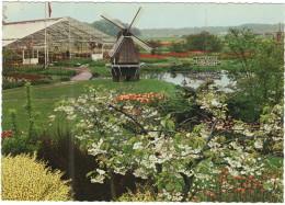 OLANDA - NEDERLAND - Paesi Bassi - Tulipshow - Frans Roozen - Vogelenzang - Not Used - Zonder Classificatie