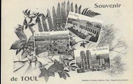 Souvenir De Toul - Multivues - Edition Gerdolle Et Briquet - Souvenir De...