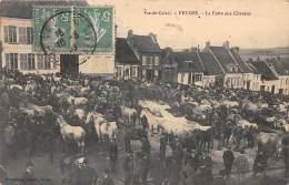 62 - PAS DE CALAIS - Fruges - La Foire Aux Chevaux - Autres Communes