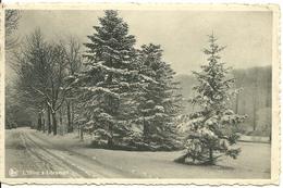 Libramont L'hiver à Libramont - Libramont-Chevigny