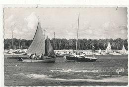LA TRANCHE SUR MER LA GRIERE Le Port Des Yachts 30 Animée - La Tranche Sur Mer
