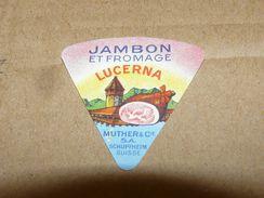 Cheese Queso Kase Label Etikette Etiqueta ~1920-1950 JAMBON LUCERNA LUCERN SWITZERLAND SCHUPFHEIM HAM - Quesos