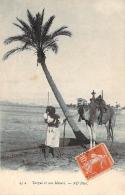 Scènes Et Types - Targui Et Son Méhari (chameau) - Algeria