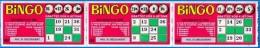 3 BINGO ATTACHES TICKET DE GRATTAGE PARFAIT LOTERIE FDJ FRANCAISE DES JEUX 203100547743-078 A 080 EMISSION ISB N° 1 - Billets De Loterie